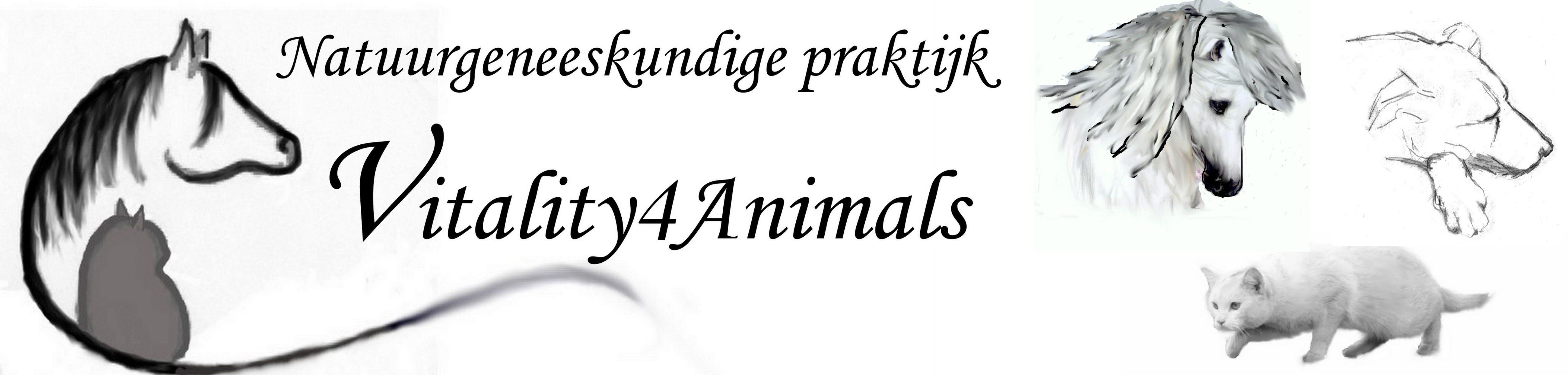 Natuurgeneeskundige praktijk Vitality4Animals